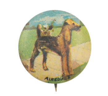 Airedale Art Button Museum