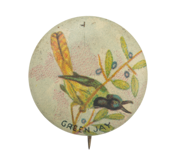 Green Jay Art Button Museum