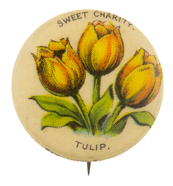 Sweet Charity Tulip Advertising Button Museum