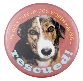 Only Type of Dog Cause Button Museum