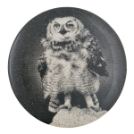 Black and White Owl Art Button Museum