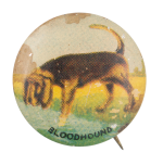 Bloodhound Art Button Museum