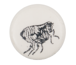 Bug Art Button Museum