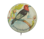 Red -Headed Woodpecker Art Button Museum