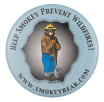Help Smokey Prevent Wildfires Cause Button Museum