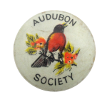 Audubon Society Bird Club Button Museum